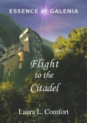 Flight to the Citadel